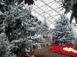 Islandscapes Foellinger Freimann Botanical Conservatory