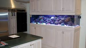 Awesome Fish Tank Designs For Home Pictures - Decorating Design ... Creative Cheap Aquarium Decoration Ideas Home Design Planning Top Best Fish Tank Living Room Amazing Simple Of With In 30 Youtube Ding Table Renovation Beautiful Gallery Interior Feng Shui New Custom Bespoke Designer Tanks 40 2016 Emejing Good Coffee Tables For Making The Mural Wonderful Murals Walls Pics Photos