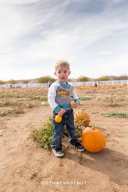 Pumpkin Patch Reno Sparks Nv by Get To Know Us Archives Fifth And Chestnut