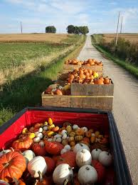 Free Pumpkin Patch In Fredericksburg Va by 10 Charming Pumpkin Patches In Iowa That Are Perfect For Fall