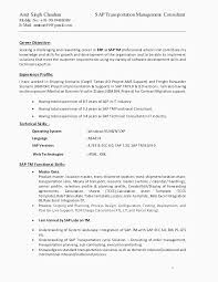 Sap Abap Sample Resume 3 Years Experience New Implementation Bi For