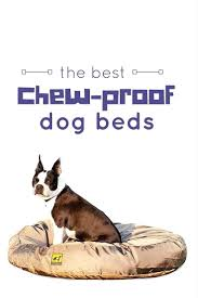 Unchewable Dog Bed by Dog Ramp To Bed Indestructible Bed Diy Big Dog Beds