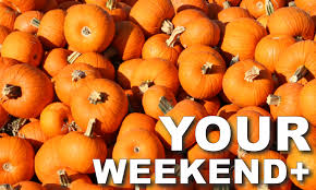 100 Highwood Pumpkin Fest Hours Halloween In Chicago Choose by Your Weekend For 10 5 To 10 11 Chicago Suburban Family