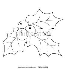 Coloring Book Page Christmas Holly Berry Leaves Vector Illustration On A White Background
