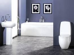 bathroom colours paint hondaherreros com