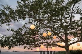 NYC Wedding grapher – Susan Shek graphy Battery Gardens