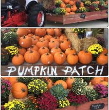 Pumpkin Patch Kitsap County by View Weekly Ads And Store Specials At Your Port Orchard Walmart
