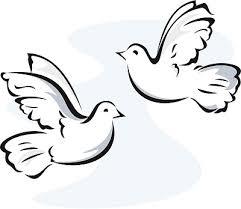 Dove clipart free vector image