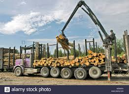 Michigan Upper Peninsula Logging Truck Industry Stock Photo: 2628345 ... Art Masterpiece Truck Of Magnetic Balls Piramal Peninsula Youtube Mornington Shire Recycling Single Axle Cllam Pud Commissioner Stable After Driving Off Us 101 Crashing Cc Repairs Moonta Works In Progress December 2007 Photo Activists Stopping Truck Port Angeles Man Killed In Wreck With Log On Highway 112 Michigan Upper Logging Industry Stock 2628340 Landscape Supplies Ltd Opening Hours 2078 Henry Ave Parts Vic 3931 Whereis Removals Small Obriens Storage 1 Free Magazines From Peninsulatruckcom Honolu Fire Department Ladder A Blog For The