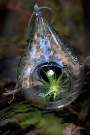 Wolfard Hand Blown Oil Lamps by 11 Best Glass Blowing Images On Pinterest Hand Blown Glass Air