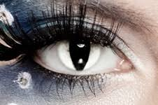 All White Halloween Contacts by Contact Lenses U003e Decorative Contact Lenses