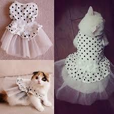 cat wedding dress i pet princess floral cat bridal wedding dress small