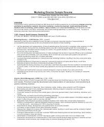 Template Example Marketing For Sle Resume Director Business Planning