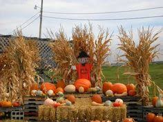 Pumpkin Patch Mobile Al 2015 by Local Alabama Pick Your Own Pumpkin Patches Alabama And Corn Maze