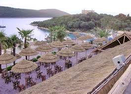 thatching systems africa roofing uk