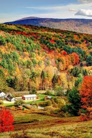 Mrs Heathers Pumpkin Patch Albany by 337 Best Autumn Colour Images On Pinterest Fall Autumn Harvest