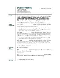 Resume Profile Template Resumes Sample Professional Customer