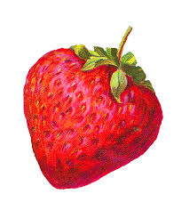 Vintage clipart strawberry 7