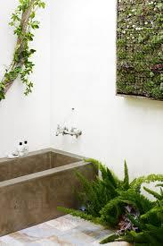 Fake Plants For The Bathroom by Bathroom Design Fabulous Bathroom Flowers And Plants Bathroom