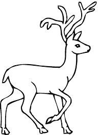 Deer Coloring Pages For Toddler