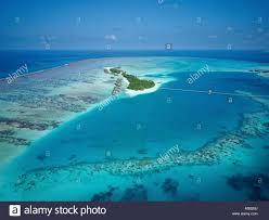 100 Conrad Maldive S Rangali Island Luxury Resort Coral Reef