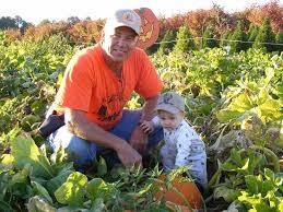 Atlanta Pumpkin Patch Corn Maze by A Guide To The Top Pumpkin Patches Near Atlanta