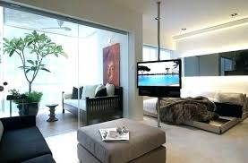 Cool Apartment Ideas Best Living Room Furniture For Pets Cozy Stuff Apartments Names Extraordinary