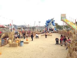 Pumpkin Patch With Petting Zoo Inland Empire by Events In The Inland Empire October 2016