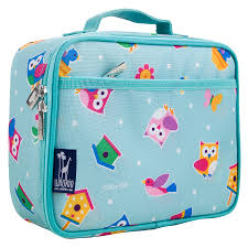 Blue Pink Owl Lunch Bag For Girls