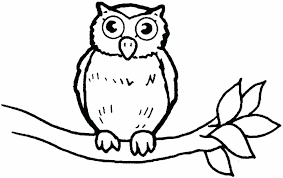 Full Image For Printable Christmas Owl Coloring Pages A Printableanimal Pagesbaby Free