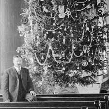 Christmas Tree Farm Lincoln Nebraska by J Sterling Morton U0027s War On Christmas Trees Nebraska State