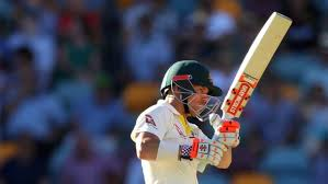Australia Opener David Warner Batted His Side To Victory With 87 Not Out In The Second