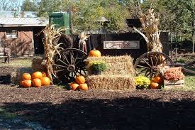 Best Pumpkin Patches Indianapolis by Places To Pick Apples Pumpkins And Take A Hayride In Indianapolis
