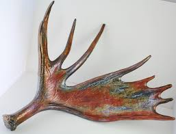 Bull Moose Shedding Antlers by Moose Antler Taxidermy Huge Bronze Gold Rust Natural Turquoise