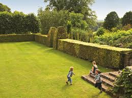 100 The Lawns Children Play On The Lawns Of Hinton Ampner A Stately Hom