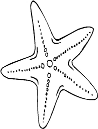 Starfish Coloring Pages For Kidsprintablecoloring