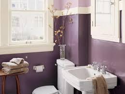 Popular Colors For A Bathroom by Download Popular Bathroom Colors Monstermathclub Com