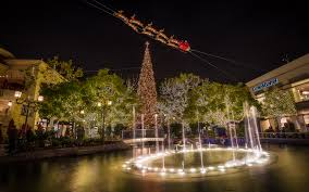 Silver Tip Christmas Tree Los Angeles by 6 Facts About Where La Gets Its Christmas Trees Curbed La