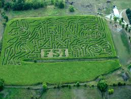 Clayton County Pumpkin Patch by Iowa U0027s Mega Corn Maze The Pumpkin Ranch