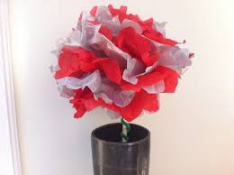 Tissue Paper Pom Flower Gift Bouquet Art Craft