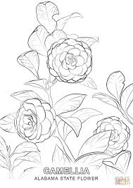 Click The Alabama State Flower Coloring Pages