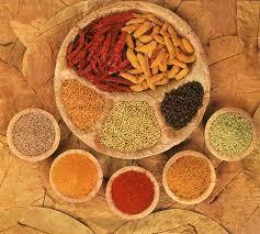 de cuisine indienne la cuisine indienne repaschezsoi
