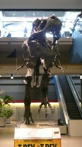 Denver International Airport Murals Horse by What Went Down In Pittsburgh Svp 2010 Part 1 The Paleo King
