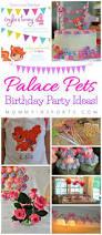 Palace Pets Pumpkin Walmart by 28 Best Palace Pets Birthday Images On Pinterest Palace Pets