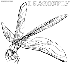 Cute Dragonfly Coloring Pages Colouring To Funny Download And Print Throughout Template Draw Book Awesome With Pictures