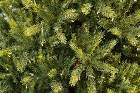 Lifelike Artificial Christmas Trees Canada by 8ft Pre Lit Kensington Fir Life Like Artificial Christmas Tree