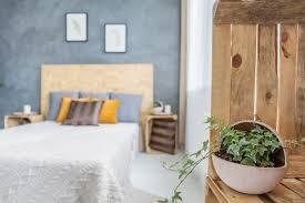efeu im schlafzimmer so wirkt die kletterpflanze