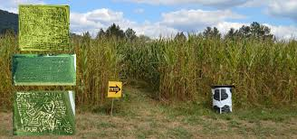 Maize Valley Pumpkin Patch by Cold Mountain Corn Maize Haywood County