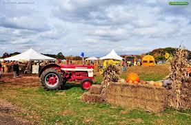 Pumpkin Picking South Nj by Snyders Farm 586 South Middlebush Road Somerset Nj 08873 Get