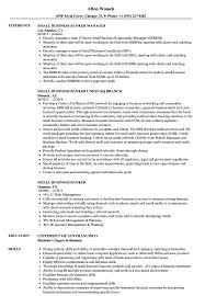 Download Small Business Banker Resume Sample As Image File